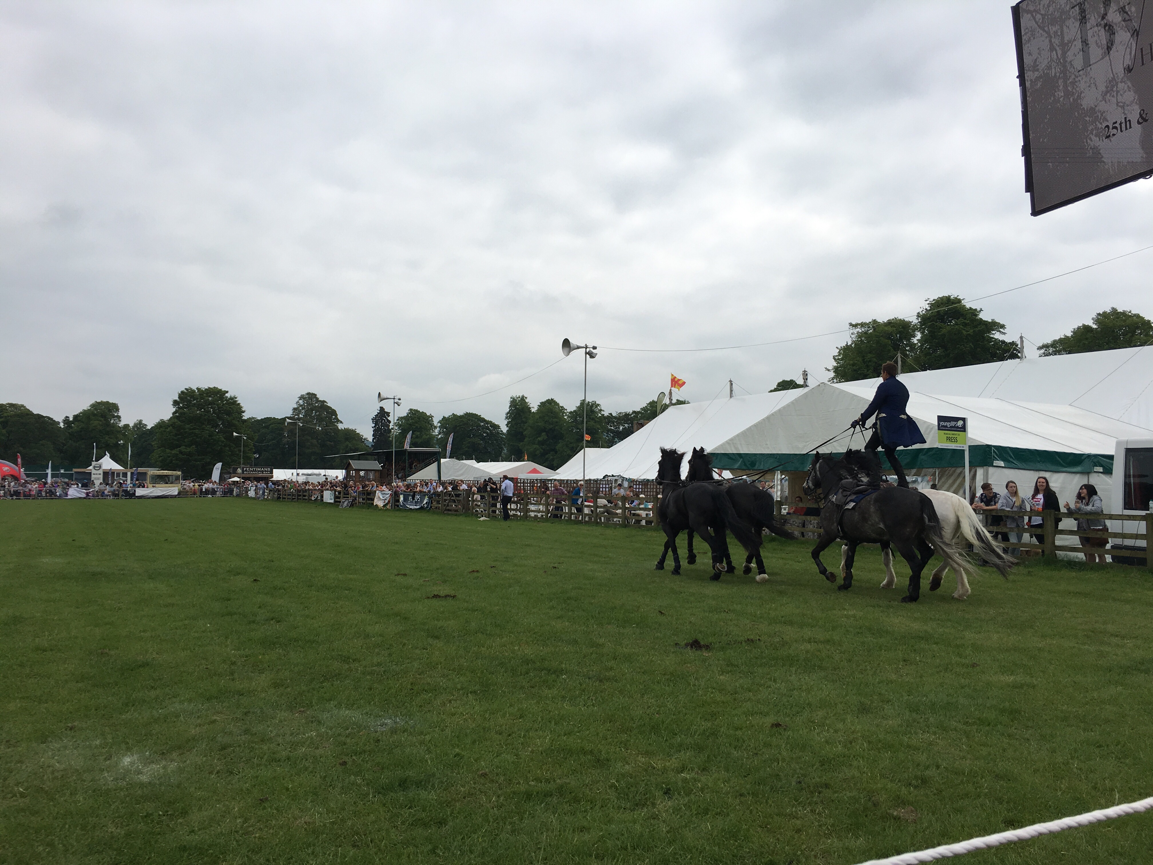 Atkinson Action Horses in action at the Northumberland County Show